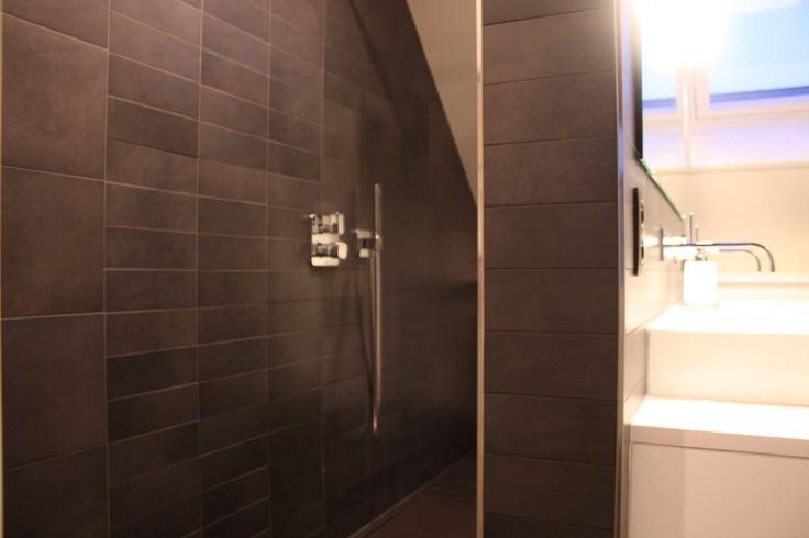 douche onder schuin dak - Google zoeken