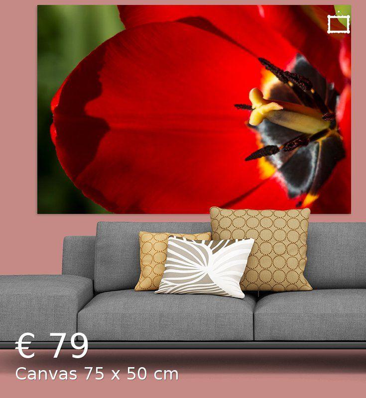 Nieuw in mijn Werk aan de Muur shop: Close-up van een rode tulp