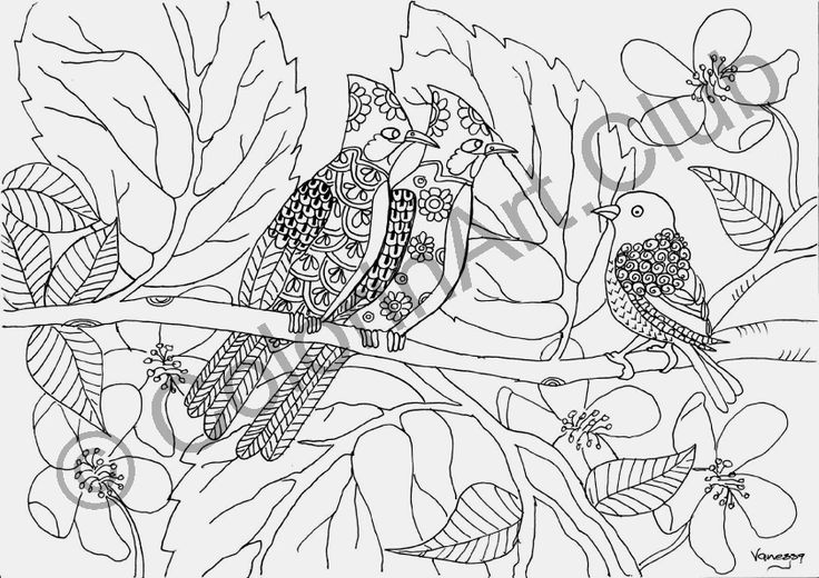 Ten unique designs in an e-book at R55/ $5 https://www.colorinart.club/products/birds-and-abodes-colouring-ebook