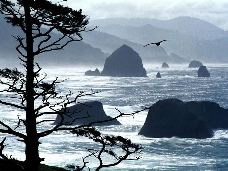 Oregon looks so strikingly beautiful....hoping to visit one day.