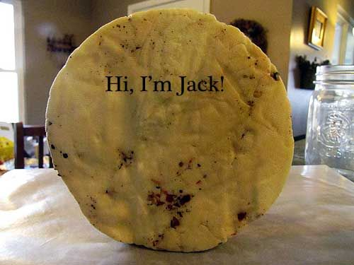 The Year of Cheese.... how to make it, how to make a DIY cheese press and more