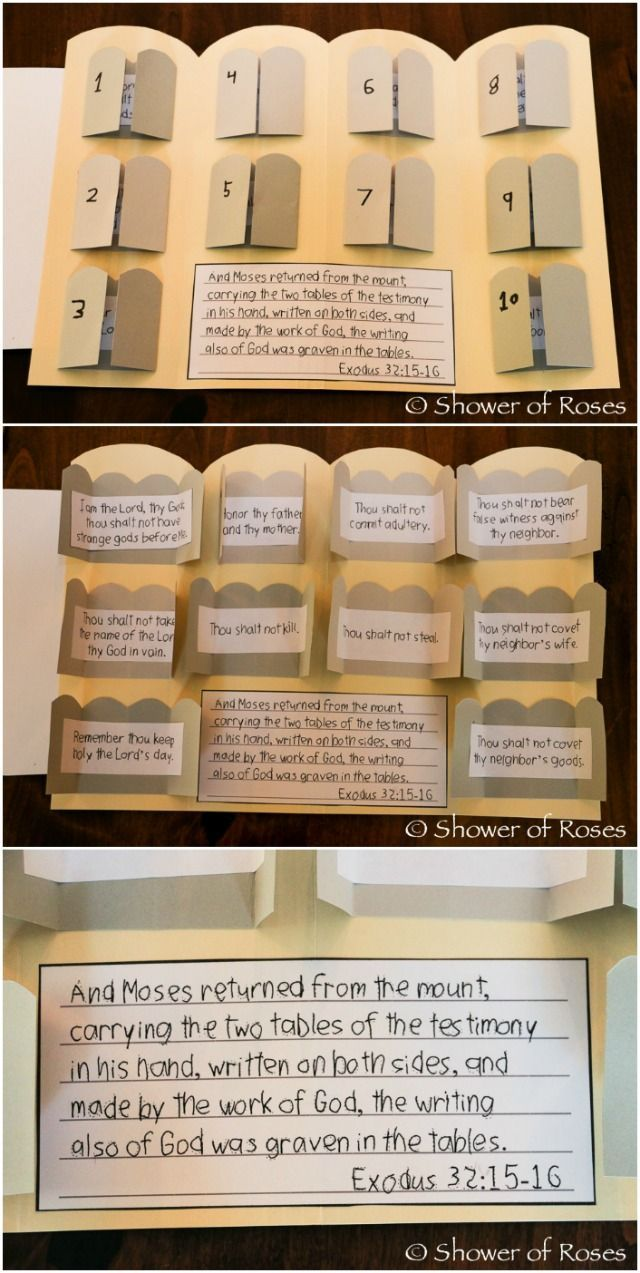 Shower of Roses: The Ten Commandments Lap Book {Catechism Craft with Free Printables!}
