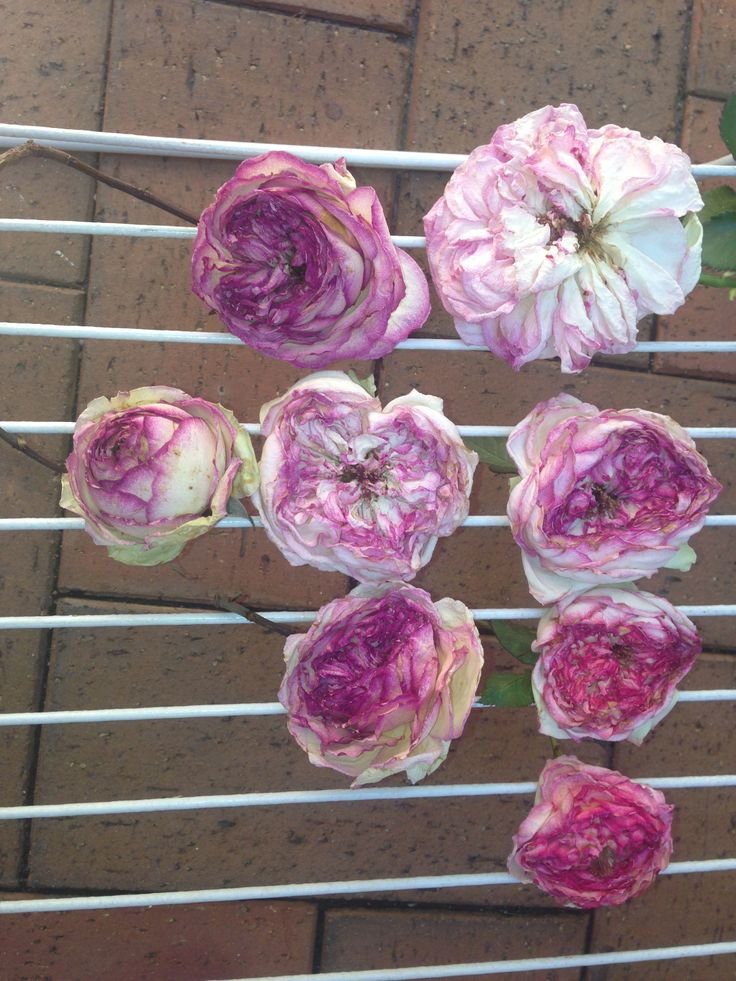 Whenever we use rose petals or rose hydrosol or roses to decorate we use our own naturally grown roses. They smell gorgeous and we don't use pesticides of course.
