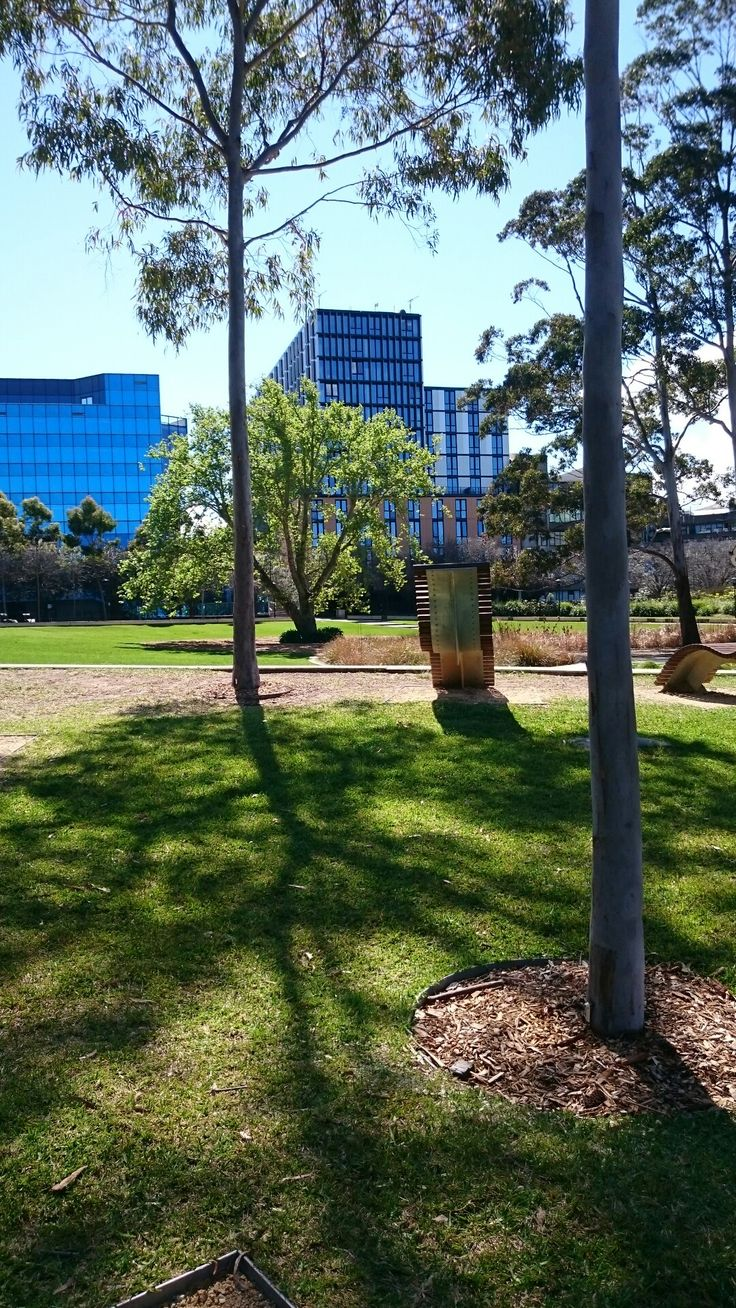 University of Sydney.