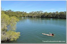 Contents0.1 Dalhousie Springs: Australia's best known oasis 1 Where is it?1.1…