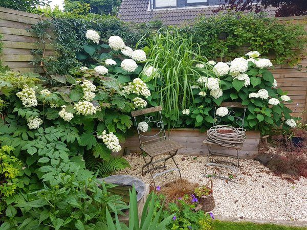 1253 besten garden Bilder auf Pinterest Garten, Beiträge und - mein schoner garten vorgarten