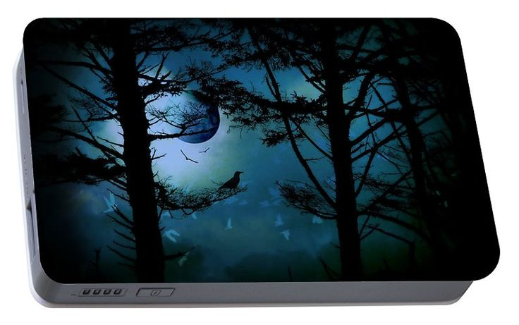The Edge Of Twilight Portable Battery Charger featuring the photograph The Edge Of Twilight by Micki Findlay