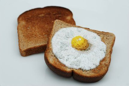 toast embroidery #1: egg on toast by judith klausner