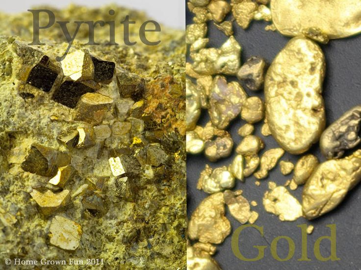 Home grown fun tell the difference between real gold and
