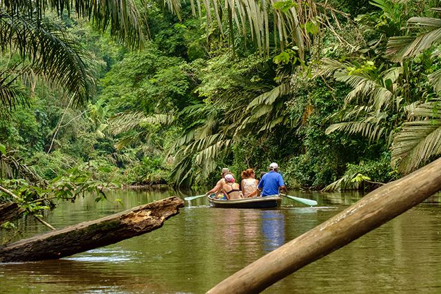 Parque Nacional Tortuguero, Costa Rica.