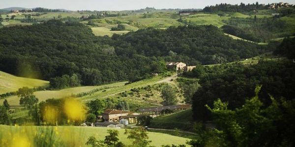 Fattoria Barbialla Nuova near San Miniato in Tuscany: it's rare to find anything in Tuscany for less than 100 Euros a night; to find such rustic-chic interiors tucked into a remote farm estate near Volterra is gold dust.