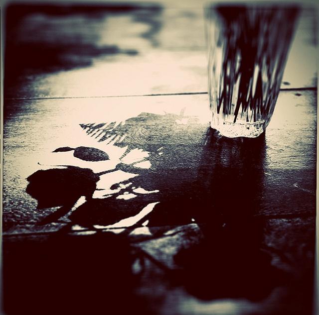beautiful photograph