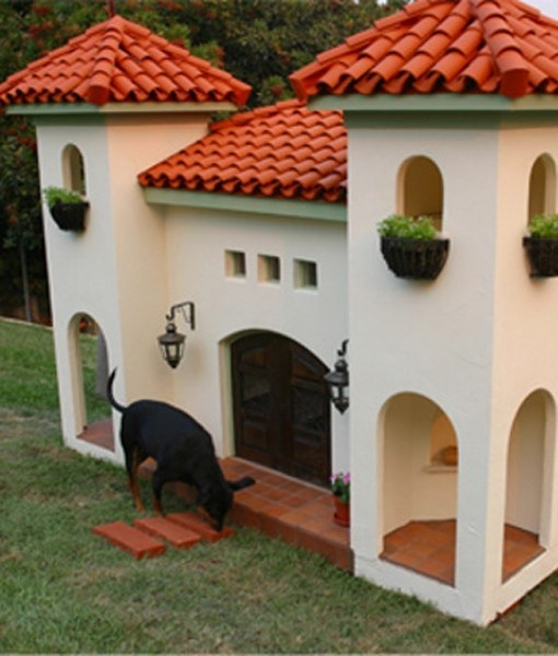 D Dog House 15 best San Die...