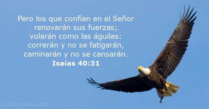 """""""Pero los que confían en el Señor renovarán sus fuerzas; volarán como las águilas: correrán y no se fatigarán, caminarán y no se cansarán."""" Isaías 40:31 ¿Qué opinas acerca de esta publicación?"""