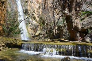 Μάθετε για το καταπράσινο φαράγγι του Μυλωνά κοντά στην Ιεράπετρα, μια όαση στο άνυδρο τοπίο της Ανατολικής Κρήτης, Νομός Λασιθίου, Κρήτη.