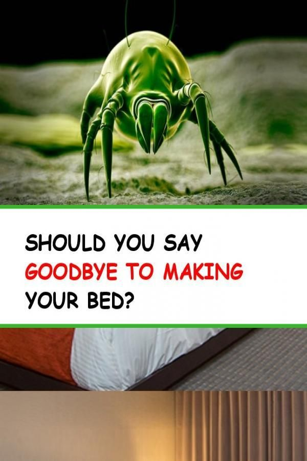 Should You Say Goodbye To Making Your Bed With Images Make