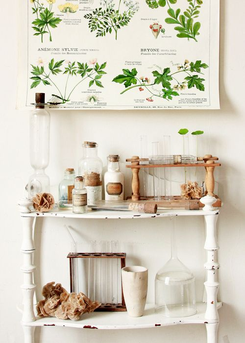 Mademoiselle Loulou  Apothecary, Bottles, White, Green, Science.  www.origin-of-style.com