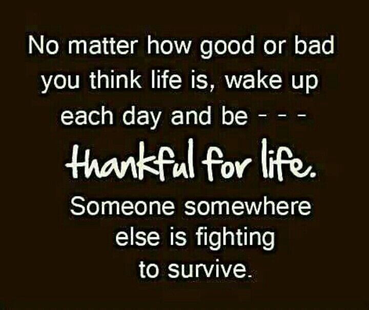 Thankful Of Life Quotes: Thankful For Life...