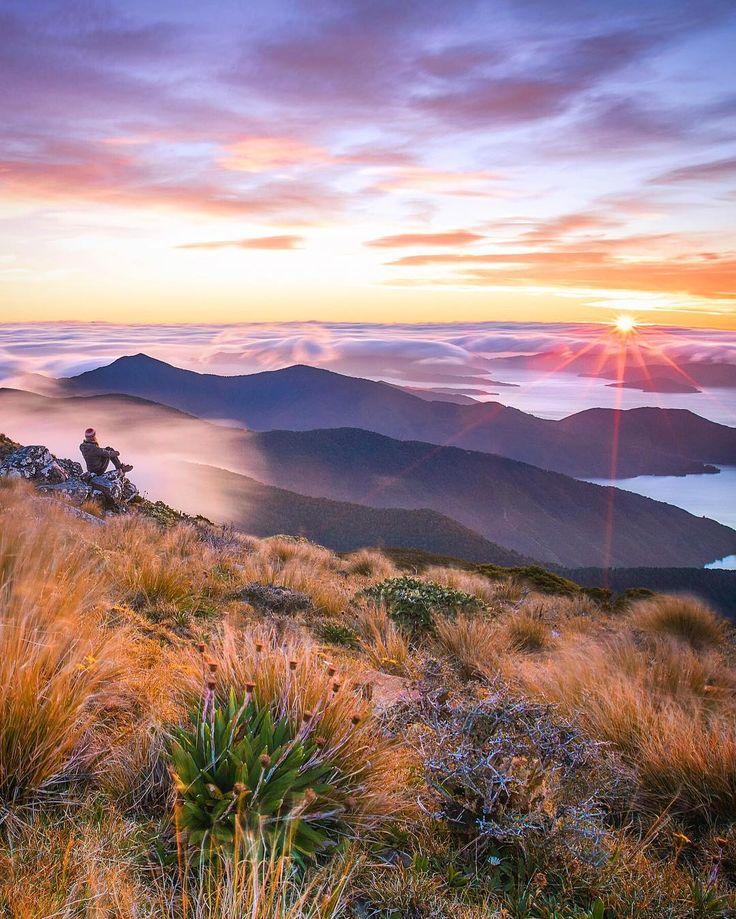 Marlborough Sounds, New Zealand by Rach Stewart (@rachstewartnz) on Instagram: #googleguides #newzealand