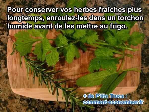 Ce petit truc très simple vous évitera de jeter et donc racheter des herbes fraîches au supermarché.  Découvrez l'astuce ici : http://www.comment-economiser.fr/conservation-herbes-fraiches-astuce.html?utm_content=bufferd99b5&utm_medium=social&utm_source=pinterest.com&utm_campaign=buffer