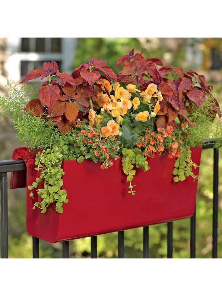 32 Best Deck Rail Planters Images On Pinterest Window Planter Boxes Deck Balusters And Deck