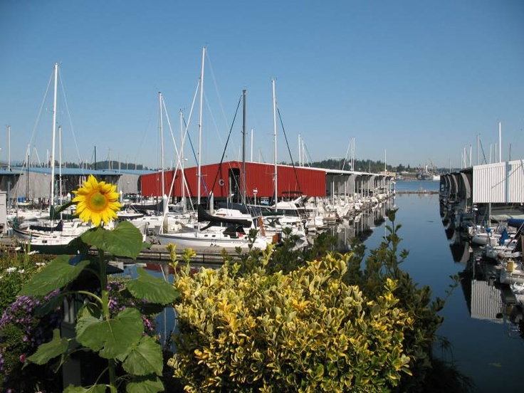 singles in port orchard wa