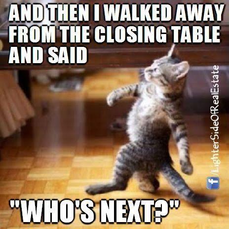 Closing Table Cat Boss