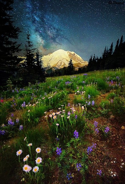 Sunrise, Mount Rainier ♥ ♥ www.paintingyouwithwords.com
