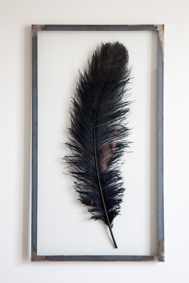 Black Ostrich Feather 45 x 80 cm