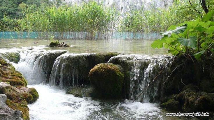 Kaskadowe położenie jezior Więcej informacji o Chorwacji pod adresem http://www.chorwacja24.info/zdjecie/kaskadowe-polozenie-jezior