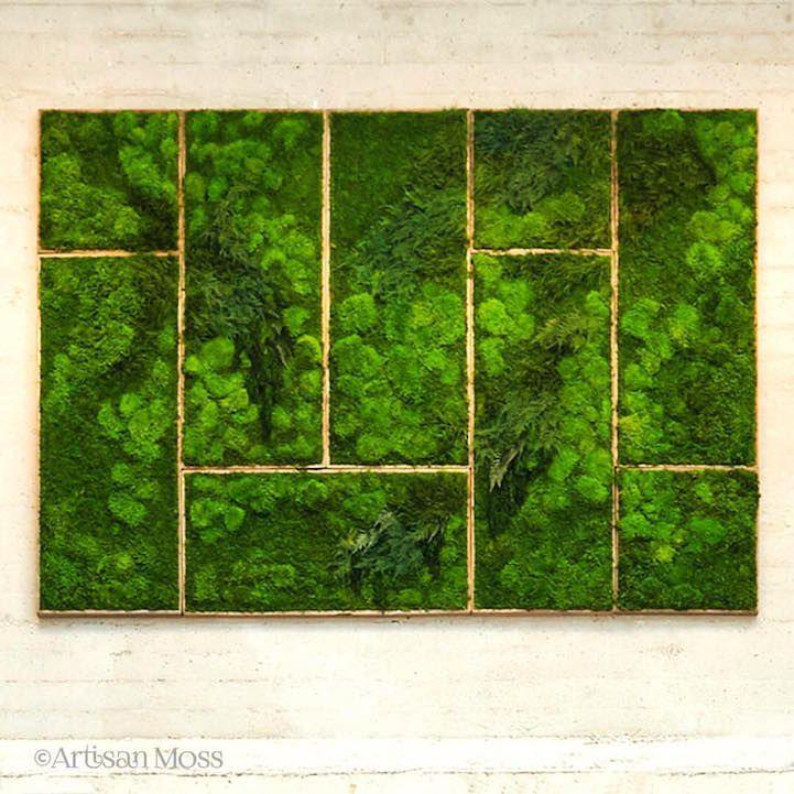 Erin Kinsey est une artiste qui réalise des tableaux de végétations vivantes, basées sur des mousses et des fougères et autres plantes sans aucun entretien.