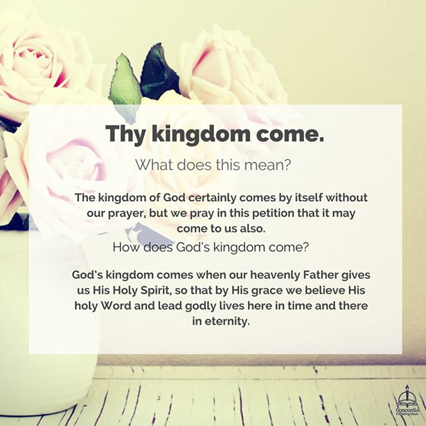 19 best Prayer images on Pinterest Prayer, Prayers and Lordu0027s prayer - how to write petition guide