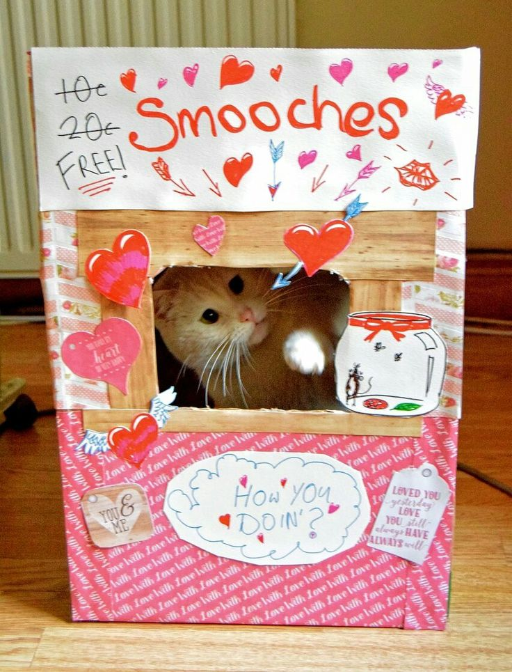 Chalky set up a kissing booth for Valentine's Day!