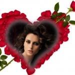 Fotoefectos con rosas rojas para enviar gratis online.