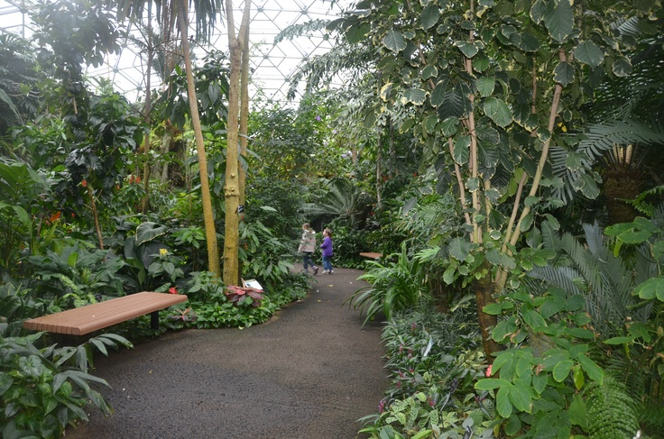 17 Best Images About Missouri Botanical Garden On Pinterest Spring Break Tropical And Missouri