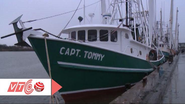 Tàu đánh cá triệu đô của người Việt ở Texas, Mỹ   VTC