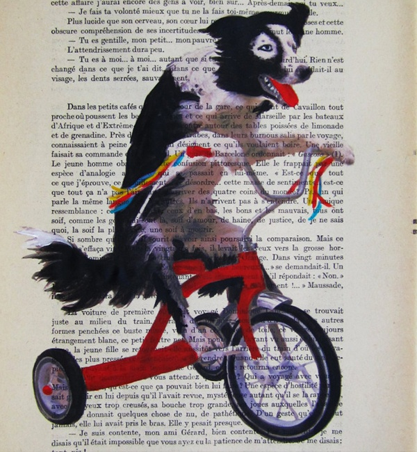 Unique Art Doggy on red bicycle