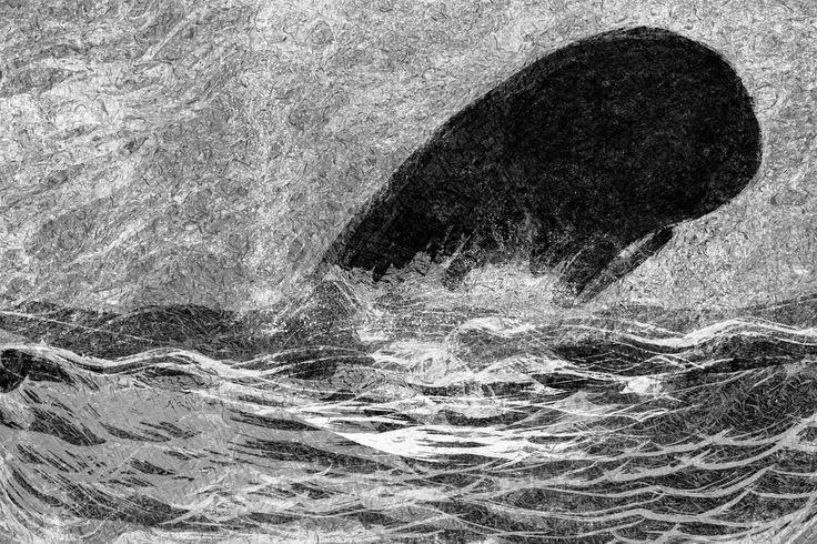 avistando la ballena