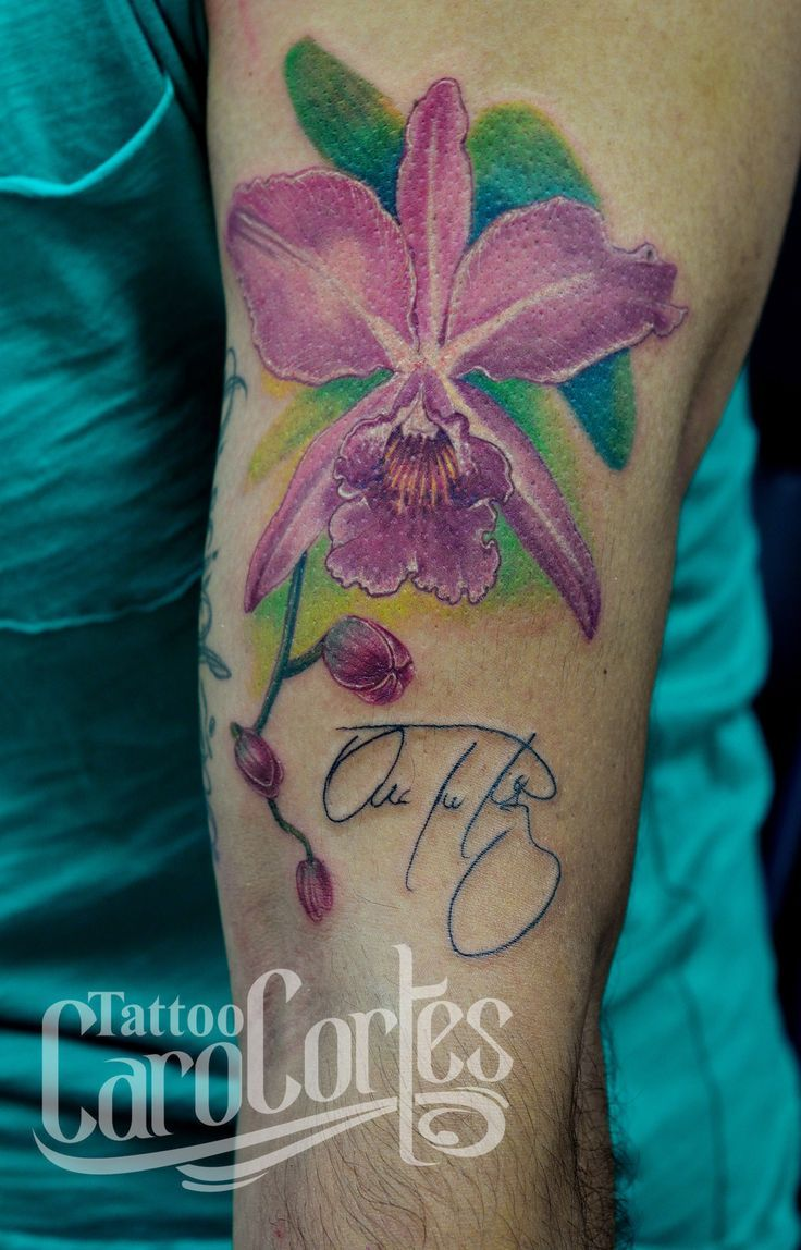16 best columbia cattleya flower tattoo images on pinterest cattleya orchid floral tattoos. Black Bedroom Furniture Sets. Home Design Ideas