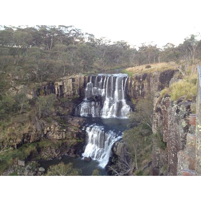 Ebor Falls at Ebor