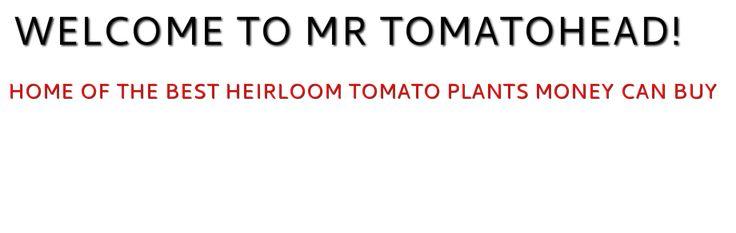 WELCOME TO MR TOMATOHEAD! - HOME (heirloom tomatoes)