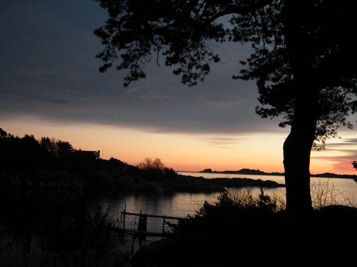 Nature at sunset.