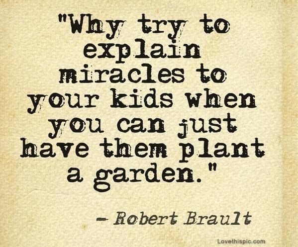 Miracles #homesfornature