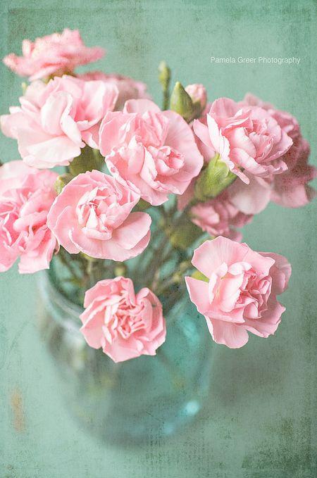 Flowers ~ Aqua and Pink