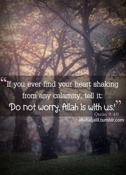 I love Allah لا تحزن إنّ الله معنا Ya Allah, please let us love you for the rest of our lives, cause YOU are the one who made us love you, and You yourself can make us perennate in this way <3