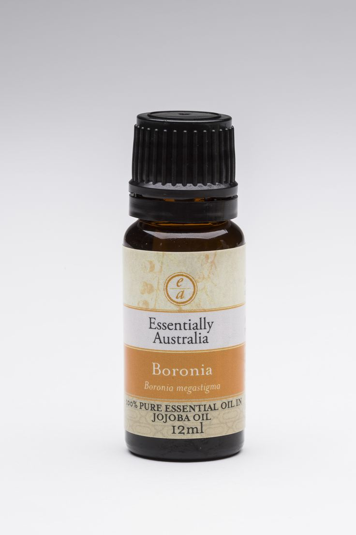 Boronia (3% in 97% Jojoba Oil) (Boronia megastigma) A great, natural perfume, you can apply to your skin (neck, wrists) direct, (florally, woody and with a berry undertone)