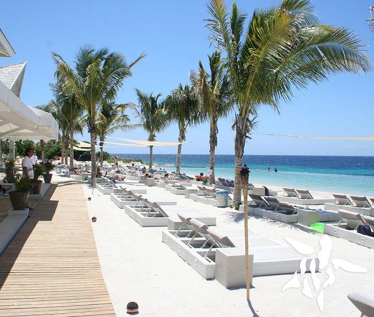 Papagayo Beach is een van de hipste en nieuwste stranden op het eiland Curaçao. Dit strand, gelegen op Jan Thiel Beach, beschikt over een eigen zeewater-zwembad en luxe strandbedjes tegen een betaling van 10 Nafl. Om het strand te betreden kost het ook 6 Nafl. per persoon. Papagayo Beach zorgt gedurende de dag voor sfeervolle deuntjes en goede bediening op het strand die heerlijke lunches en drankjes serveren. Op Jan Thiel Beach bevinden zich meerdere stranden, waaronder Zest Beach en…