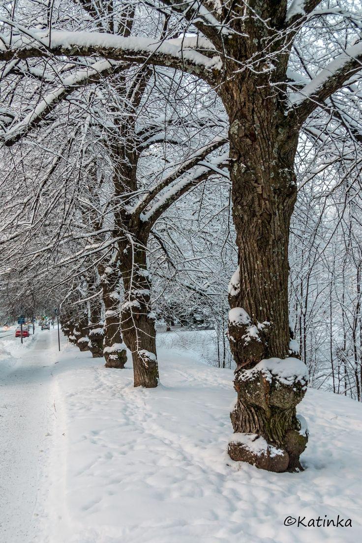 Haaveena hyvä kuva: Talvinen Kuopio