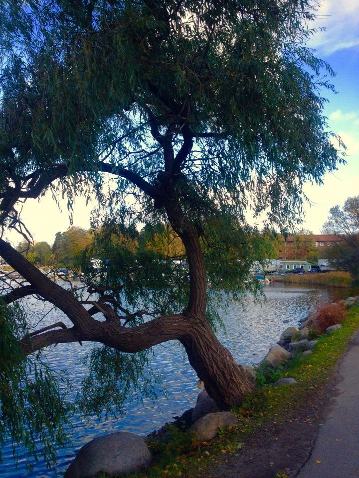Brunnsviken Stockholm