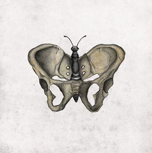 I love this butterfly pelvis. Butterflies are the manifestation of transformation just as women are transformed in birth.